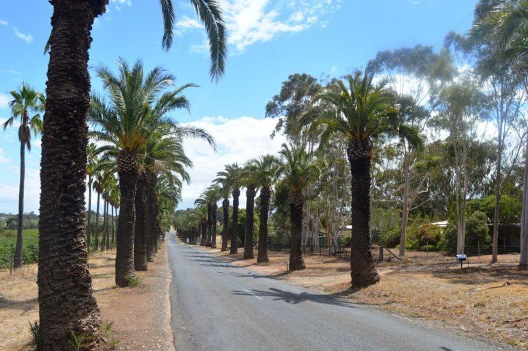 Autostrada del Sole w nowej odsłonie