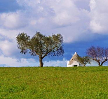 Wakacje w Apulii: o dialekcie, kuchni i niespodziankach