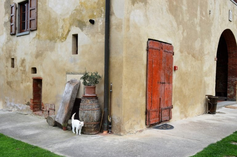 Agroturystyka Il Gorgo – jedno z tych miejsc, które opowiadają historie